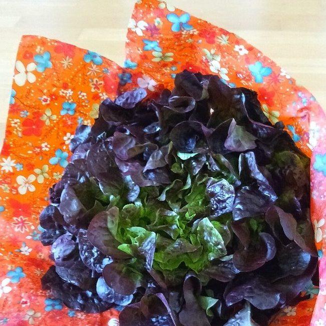 Salat hält frisch im Bienenwachstuch